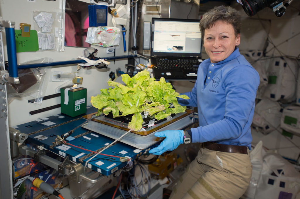 NASA astronaut Peggy Whitson harvested another crop