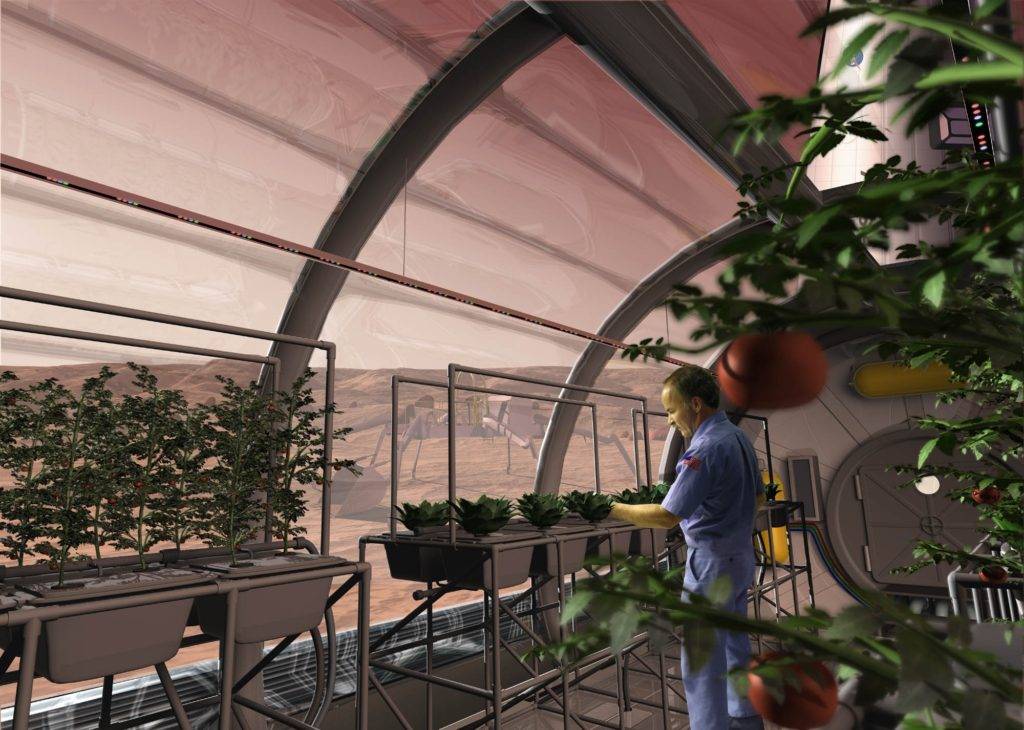 NASA Rendering Graphic of Possible Space Gardens